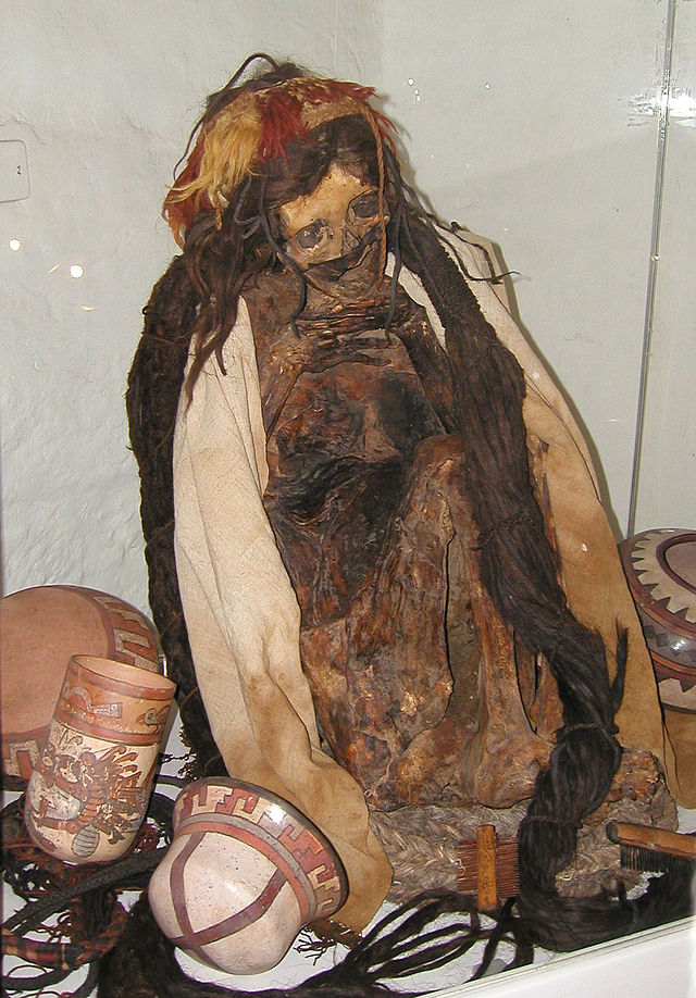 640px-Nazca_Mummy_in_the_Museo_Historical_Regional,_Cusco